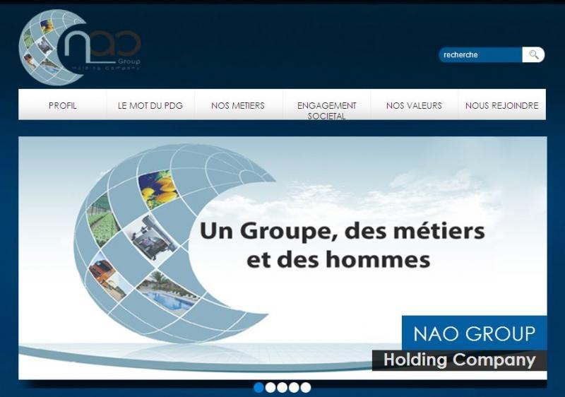 <h4><span>NAO Group</span></h4>